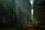 Grzegorz Foltyński - Scena w lesie. Kategoria Sceny myśliwskie - miejsce 2