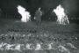 Zakończenie Łowów z sokołami przy pokocie w Lesznie, w 1986 roku. Sokolniczy Marek Pieńkowski zamyka udane polowanie z sokołami.